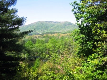 Pisgah Forest- Serenade Cove- View
