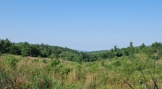 farm land for sale wnc