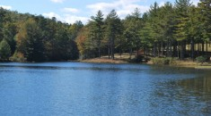 Stone's Lake close to DuPont State Forest