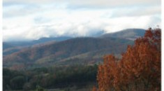 View of Pisgah National Forest