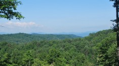 Views of Pisgah and Blue Ridge Parkway